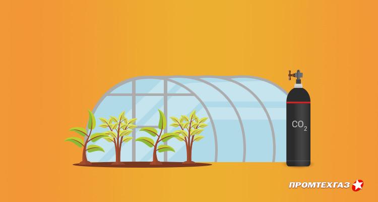 Углекислый газ для теплиц и животноводства – полезные качества и технология применения