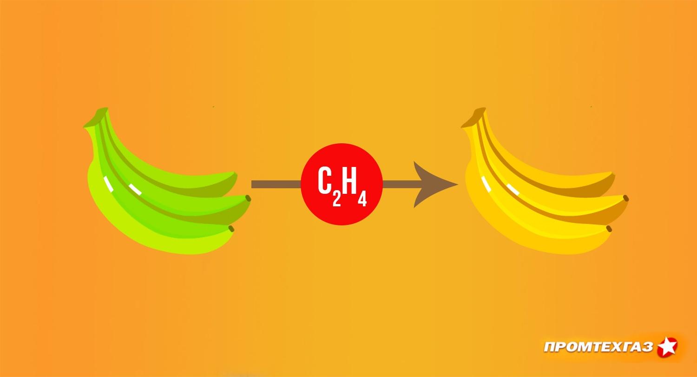 Газ этилен для дозревания плодов, банановый газ
