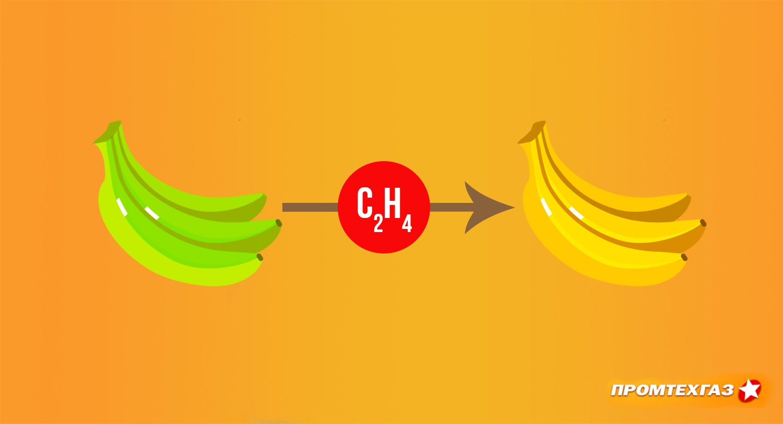 Применение газов этилен и ацетилен для дозревания плодов