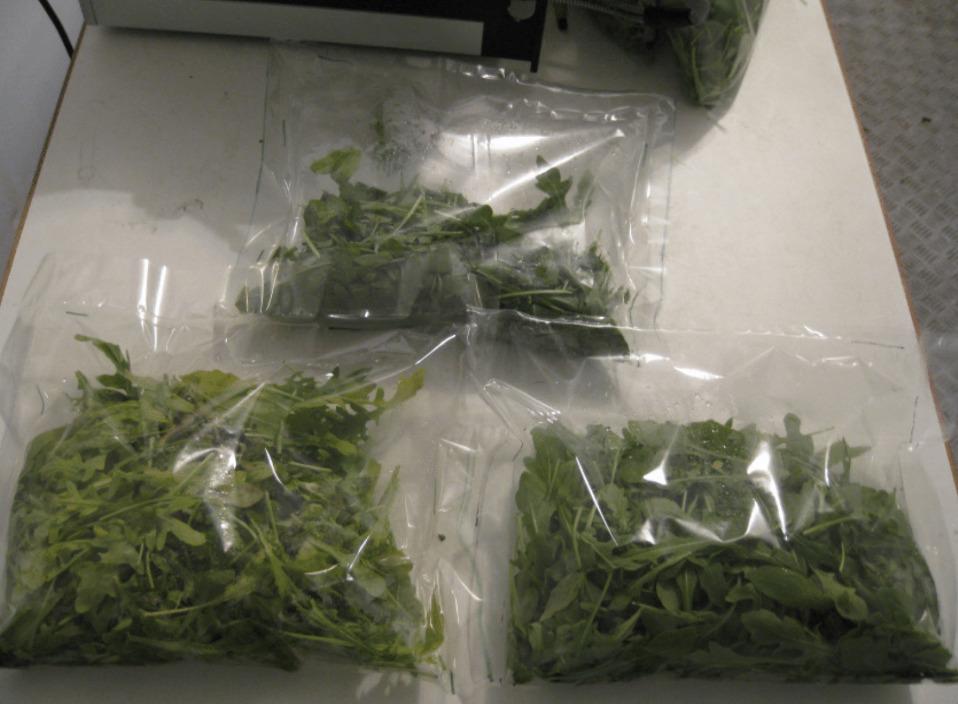 пластиковая упаковка свежей зелени