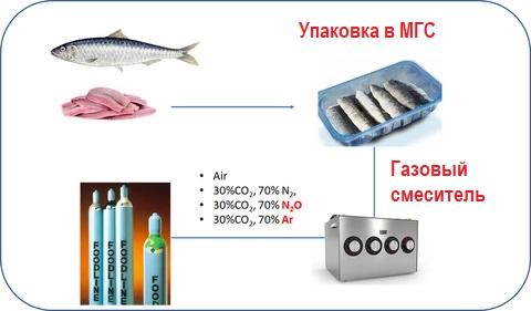 процесс упаковки рыбы в модифицированную атмосферу